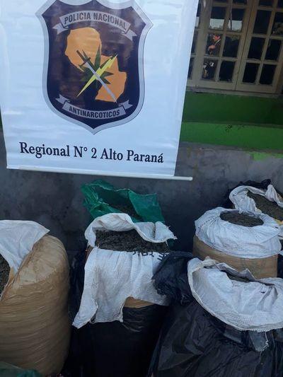 Allanan supuesto laboratorio de marihuana en Alto Paraná