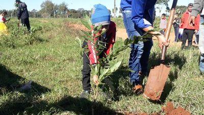 Plantaron más de 200 árboles nativos en San Pedro