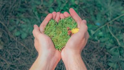Reconocimiento Verde 2019: estas son las mejores prácticas empresariales