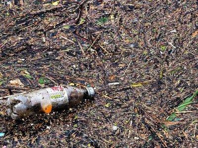 """En la lucha contra el plástico """"el cambio empieza en casa"""""""