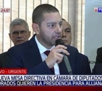 Oficialistas y cartistas dan apoyo a Alliana para presidir Diputados