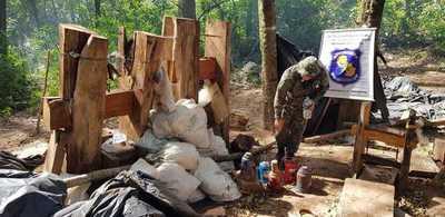 Destruyen 2 toneladas de marihuana en Yby Ya'u