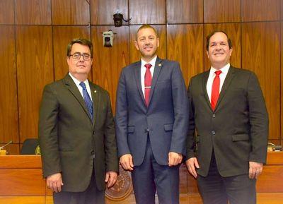 Bancadas de la ANR posicionan a Alliana en presidencia de Diputados