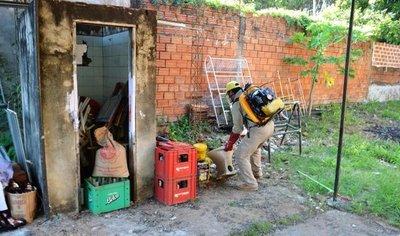 Dengue: Caaguazú con cerca de 1.000 casos sospechosos