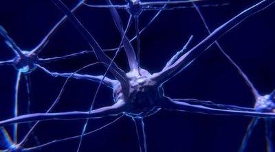 Desarrollan nuevo modelo para tratar autismo con sistema de edición de genes