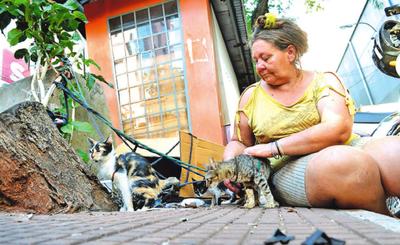 """Deolinda, la """"señora de los gatos"""""""