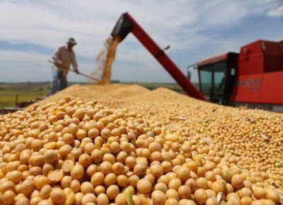 Sector sojero dejó de ingresar unos US$ 549,7 millones