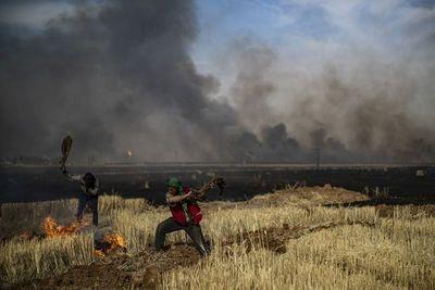 Al menos 10 muertos por incendios criminales en campos de trigo en Siria