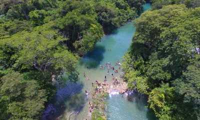 Alertan sobre posible destrucción de Reserva Natural Tagatiya-mí