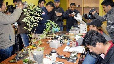 Ahora encuentran hasta plantas de marihuana en la cárcel de San Pedro