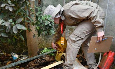 """""""Pará-na los criaderos"""": trabajos de rastrillaje y fumigación previstos para hoy viernes"""