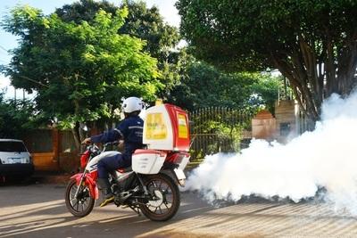 Disminuyen los casos de dengue en el país