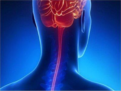 Mal tratamiento de meningitis puede llevar a la muerte en 24 horas
