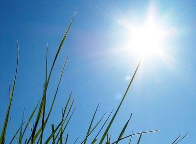 Viernes cálido y sin lluvias en la zona sur