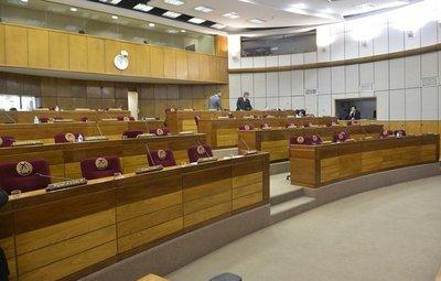 Senadores deja sin cuórum sesión al momento de tratar proyecto Ñane Energía