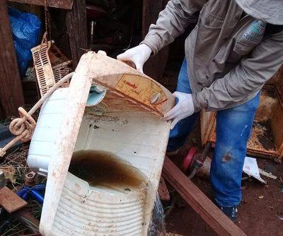 """""""Pará-na los criaderos"""": trabajos de rastrillaje y fumigación prosiguen este jueves"""