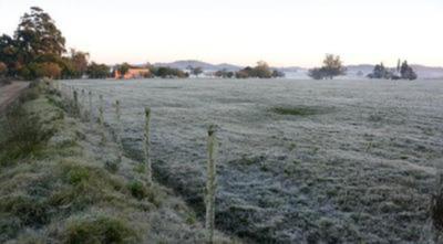 El frío amenaza al campo