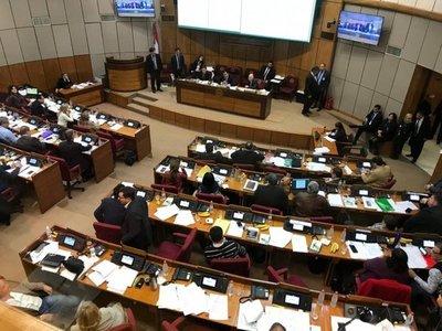 Senado aprueba versión de Diputados del proyecto Ñane Energía