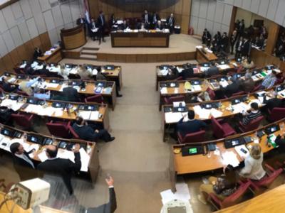Senado sanciona proyecto 'Ñane Energía'