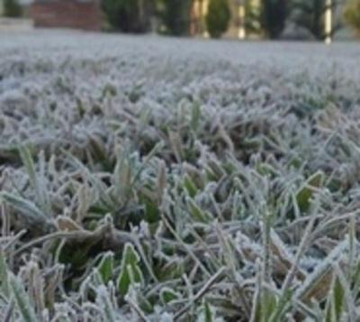 Frío polar: Temperatura llegó a casi