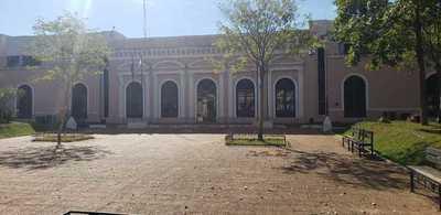 Allanan Municipalidad de Concepción