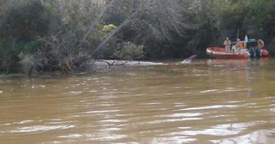 Ojetopa feroz ballena muerta en Río Paraná