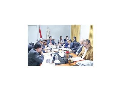 El Consejo  pide adelantar la elección de representante
