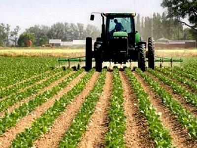 Aporte agro significó menos del 5% de lo recaudado por la SET