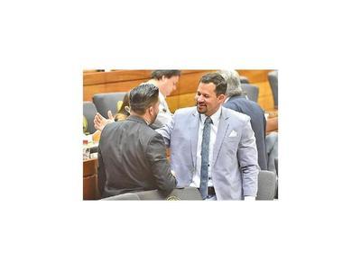 Veto a  ley de autoblindaje se trata mañana en Diputados