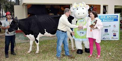 Se premió a la vaca más productiva del país: produjo 71,4 litros de leche
