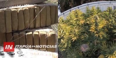 MINISTRO DE LA SENAD HABLÓ SOBRE EL PLAN DE DESARROLLO DEL CANNABIS MEDICINAL