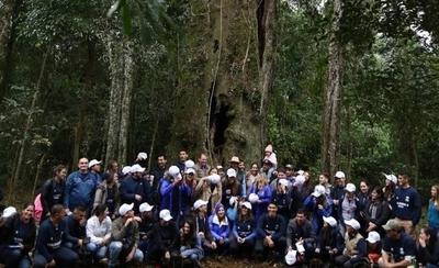 """HOY / Surgen los primeros finalistas  de """"Los Colosos de la Tierra"""",  árboles con cientos de años"""