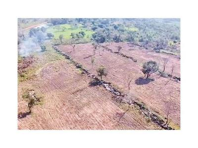 Detectan desmonte de 30 hectáreas en zona de Horqueta