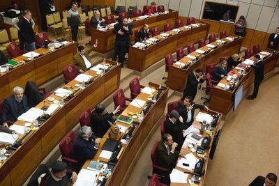 Sesión extra en Senado por cuestionado acuerdo energético con Brasil