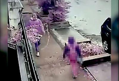 Detienen a sospechoso de agredir brutalmente a niña en Sajonia