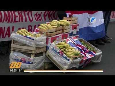 Incluyen banana en la merienda escolar