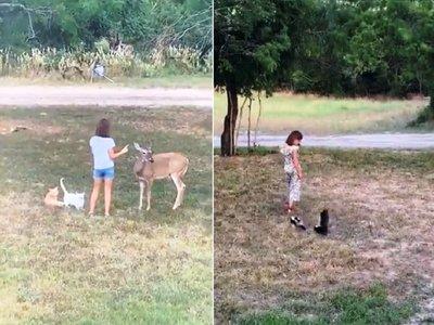 Niña se comunica con animales y sorprende en redes sociales
