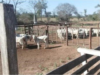 Crimen en el Chaco: Prisión domiciliaria preocupa en investigación