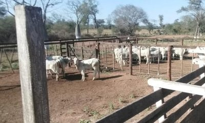 Prisión domiciliaria preocupa en investigación de crimen en el Chaco