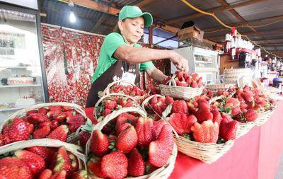 Paraguarí recibe este fin de semana a la Expo Frutilla