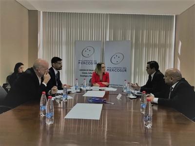 Comisión de Parlasur plantea extensión de visa para estudiantes en Mercosur