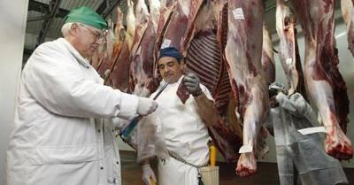 En julio creció la faena y la exportación de carne