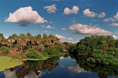 Buscan que el pantanal paraguayo sea elevado a patrimonio de la humanidad