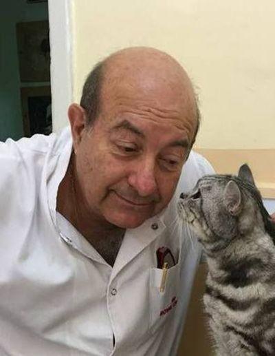 El doctor de los gatos