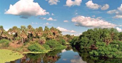 Buscan patrimonio de la  humanidad para pantanal
