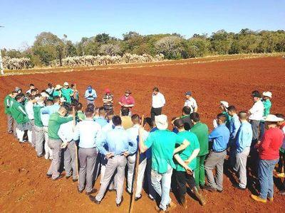 Alumnos de Escuela Agrícola de Itapúa inician  cultivo de papa
