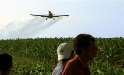 ONU condena a Paraguay por muerte a causa de agroquímicos