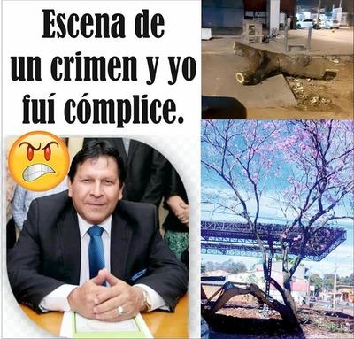 Escrachan a concejal Roberto Brizuela tras tala de un tajy