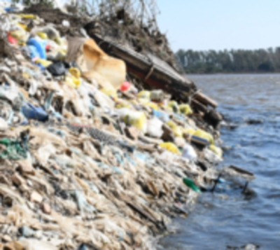 Concluyen que basura en arroyo Mburicaó mata a los peces