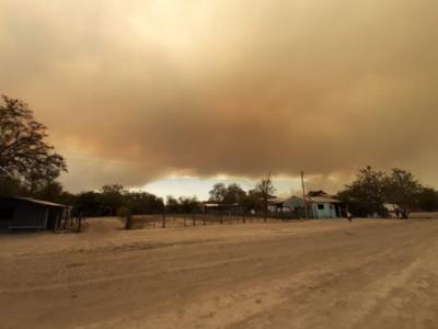 Controlan incendio en reserva del Pantanal Paraguayo